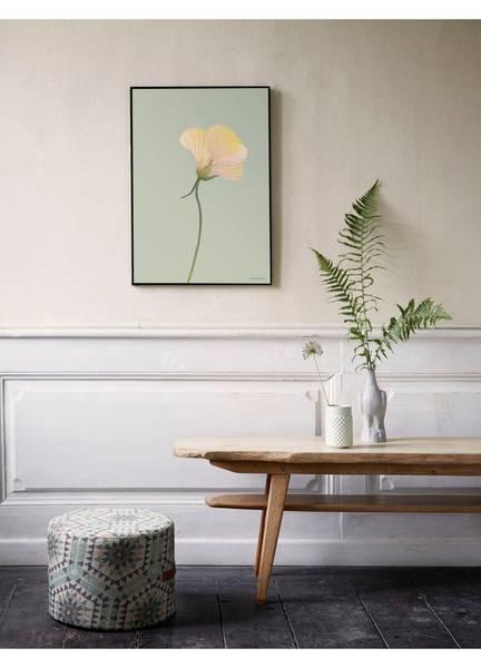 Bilde av PLAKAT - Blomkarse - Vissevasse