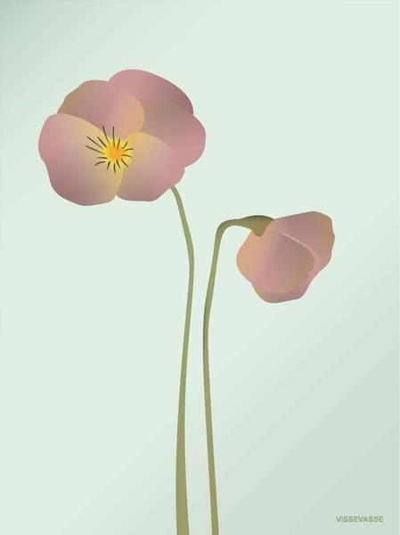 Bilde av PLAKAT - Stemorsblomst - Vissevasse